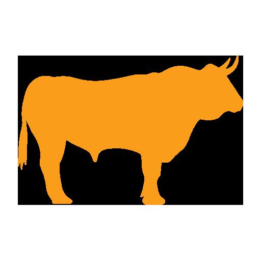 Hohenloher Wagyu – Gourmet Beef aus dem Hohenloherland